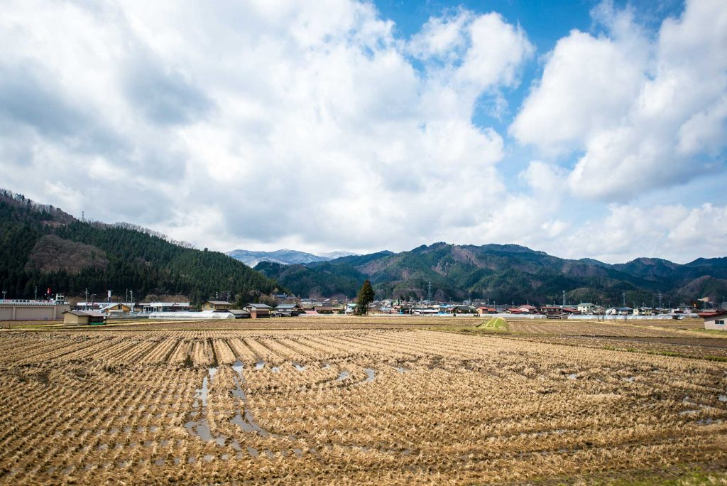 A small town in Japan with lots of rice planted everywhere